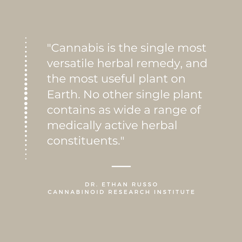 "Quote from Dr. Ethan Russo of the Cannabinoid Research Institute. The quote reads, ""Cannabis is the single most versatile herbal remedy, and the most useful plant on Earth. No other single plant contains as wide a range of medically active herbal constituents."""